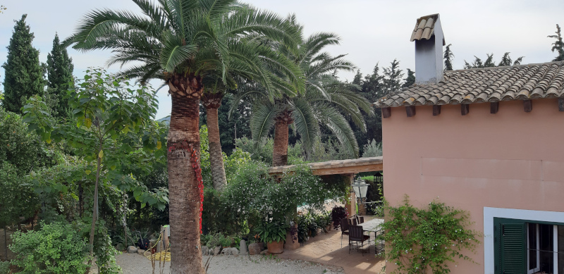 TRADITIONAL MALLORCAN FINCA WITH TOURIST LICENCE NEAR ALARO -1.1M EUR